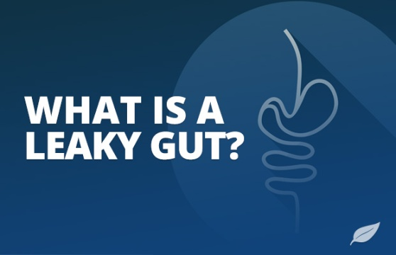 2016-12-23 Leaky Gut